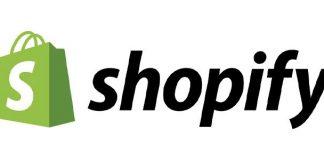 Shopify developer business